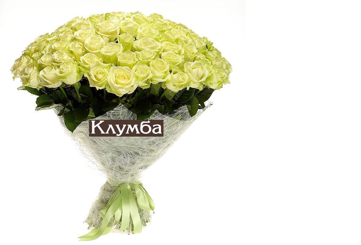 Клумба иркутск цветы